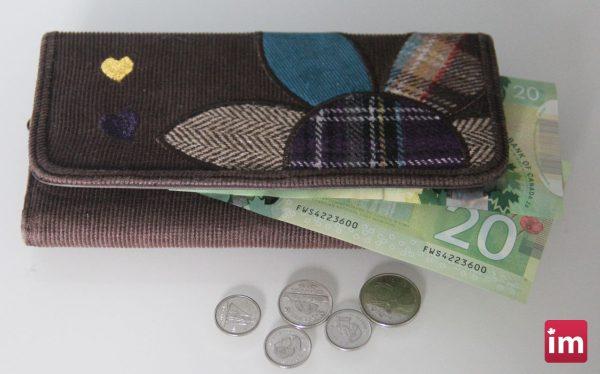Saskatoon-income