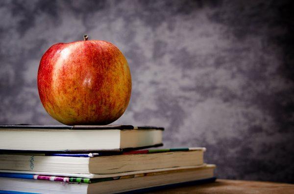 School Teacher Salary Canada